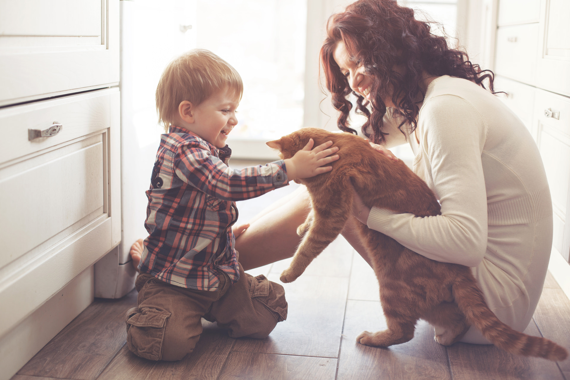 Caretaker and child playing with cat