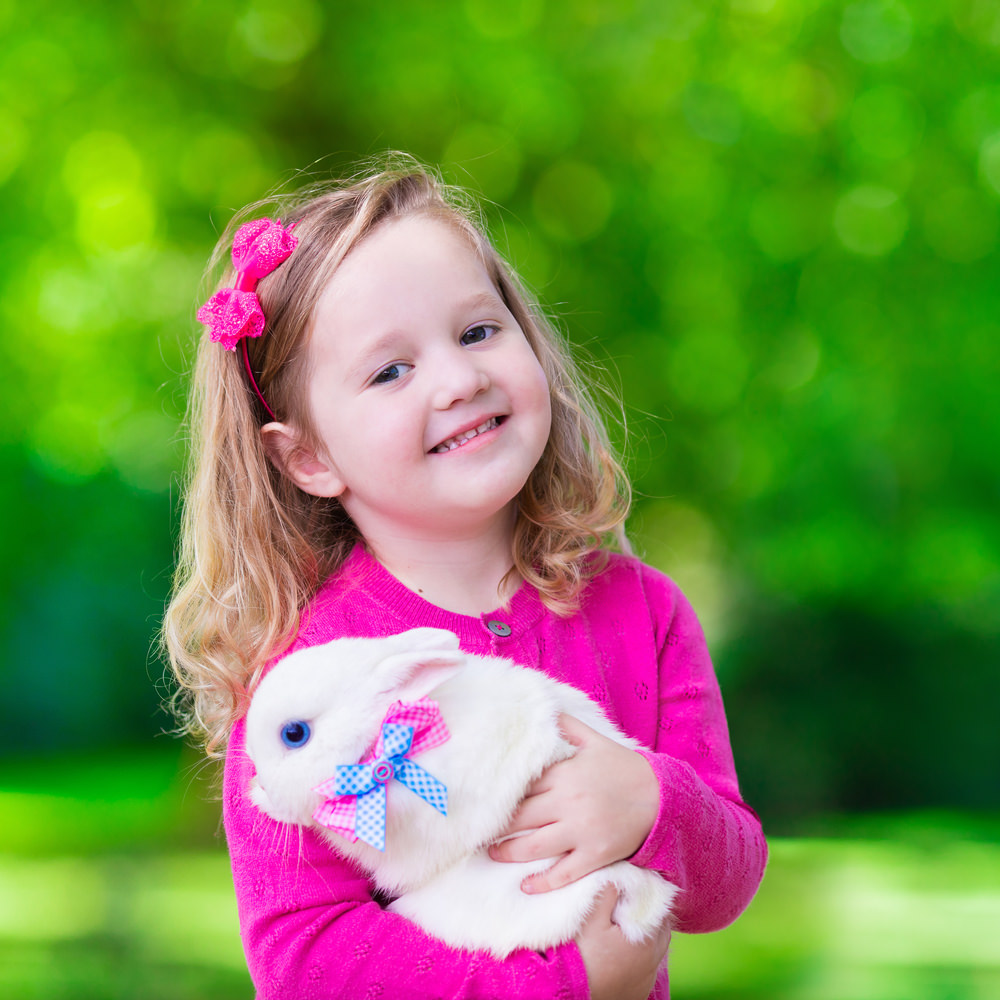 Girl play with rabbit