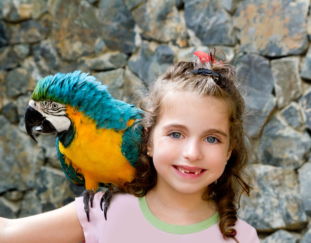 Girl with yellow parrot
